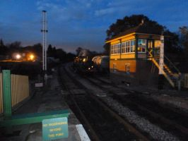 The 'Ps' at Kingscote by rh281285
