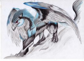 Gryphon by palli92