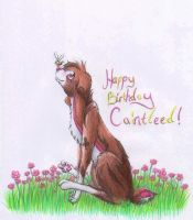 Happy birthday Caintleed :) by lostdesertfan