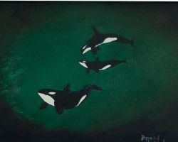 Killer Whales by NickDean