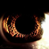 Eye.... by BaselMahmoud