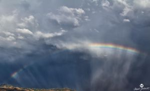 Pieces of a Rainbow by mjohanson