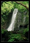 A Catlins Waterfall by Sir-Didymus