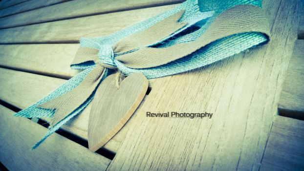 My Heart is Your Gift by Revival-Photography