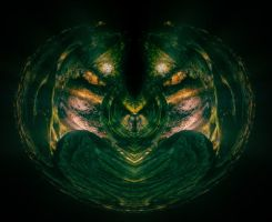 Reptilia by Grovelight