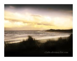Alnmouth Northumberland by Callu
