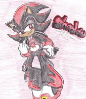 Shadow REMIXED by MsShadowette