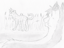 Graystripe and Silverstream by PenguinEatsCarrots