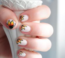 Butterfly Flower by RobertsPhotography