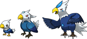 Some Sea Eagles by Infernape77