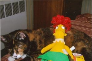 My Cat and Bob by sideshowbobfanatic