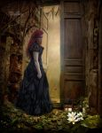 The Open Door by Nightt-Angell
