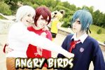 Angry Birds: white, red, blue by palecardinal