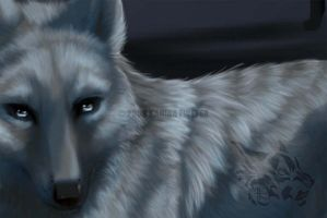 Winter Wolves: Preview by Kanina-Firefox