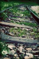 forest railway by iacobvasile