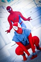 Scarlet Spider And Spider-Man by joker99xdraven