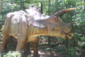 KD Dinosaurs Alive! Triceratops by DinoLover09