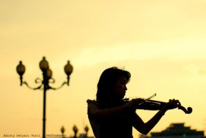 Silent Violin by distyy