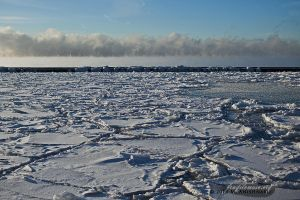 Lake Ontario - January 22.14. by fragilemuse-org