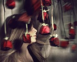 Red roses by NadyaBird