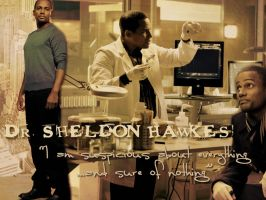 Dr. Sheldon Hawkes by Machii-csi
