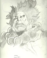 Akuma Streetfighter by Luigib07