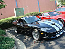 Viper Sickness by PhotographiCreed