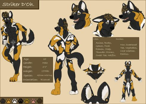 Striker Reference Sheet by Wolfool