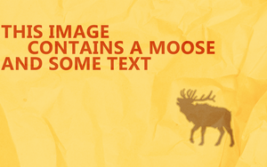 Moose and Text by jacobb212