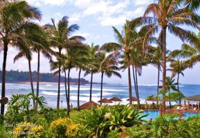 Turtle Bay Resort by Leahvarney