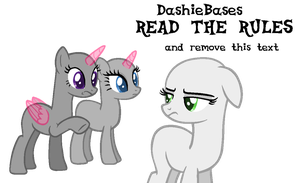 MLP Base: Please fucking pay our McDonalds order by DashieBases