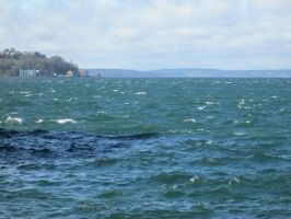 Windy Day in the Sound (2) by damekage