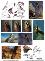Bearded Vulture, Golden Eagle - Study Compilation by LeccathuFurvicael