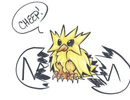 Zapdos by Frenchielover4ever
