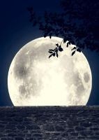 Moon background wall by TinaLouiseUk