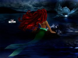 Little Mermaid by Orphen5