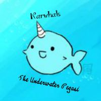 Narwhals by allie-boo123