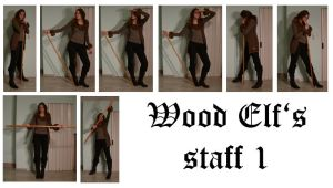 Wood Elf's staff 1 by syccas-stock