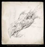 Dragon Head by DuirwaighStudios