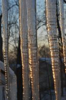 Icicles 03 by calger459