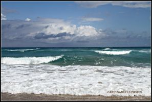 Florida.. by candysamuels