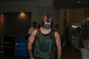 Bane by OberthPhotography