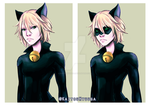 ChatNoir by KaitouHyuuga