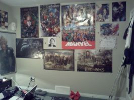 These are just 'some' of the posters I have. by Muffinlover24
