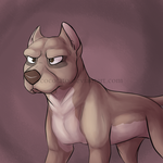 Pitbull by Cocotato