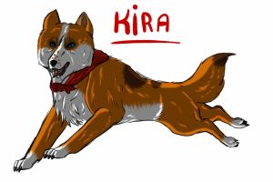 kira - mini contest by wolfhound56200