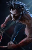 Wolverine by pierreloyvet
