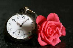 rose and broken clock by Nexu4