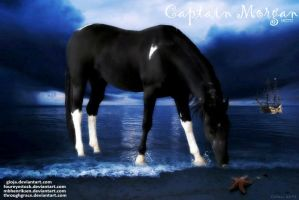 Captain Morgan by JuneButterfly-stock
