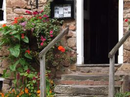 Door and flowers. by Hagrid-on-crack